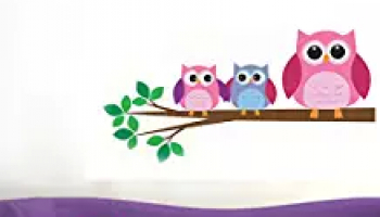 Steal Deal : Wall Stickers Starts At Rs.58 Only.